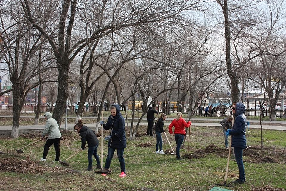 ВВолгограде 5 тыс. неравнодушных городских жителей вышли насубботник