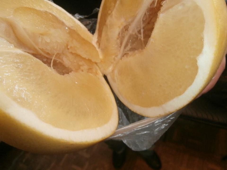 Фроловчанин накачал цитрусовые помело спиртом для передачи вколонию