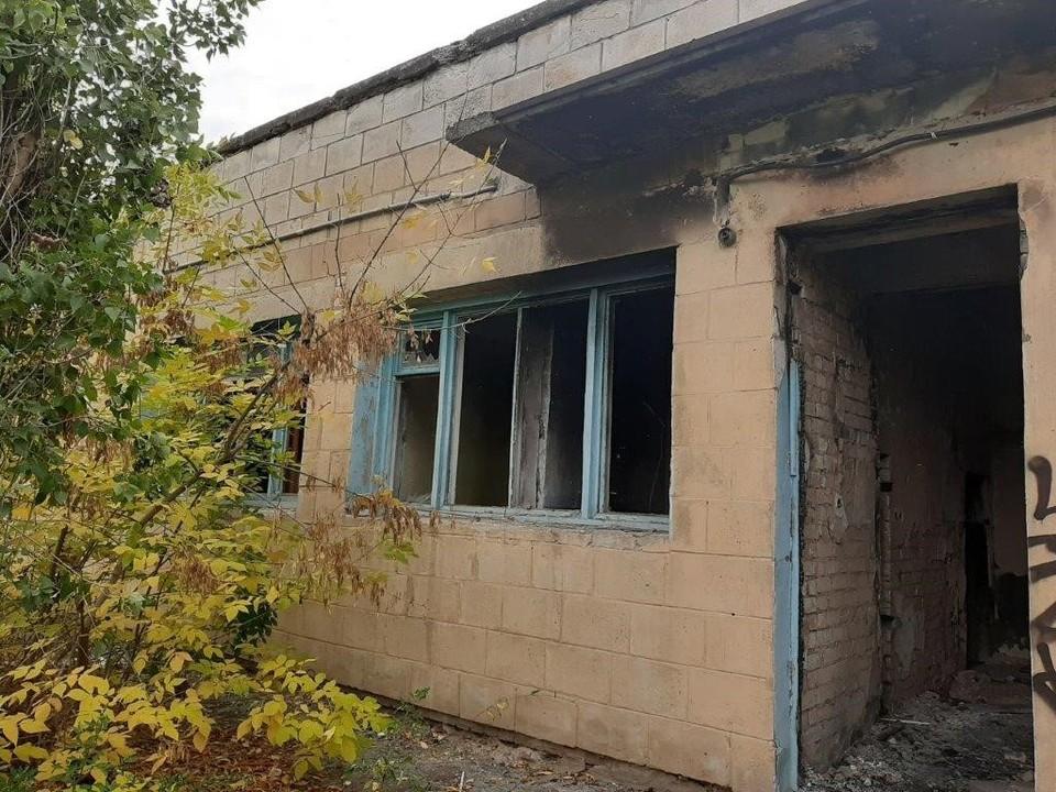 Кабан челябинская область фото для