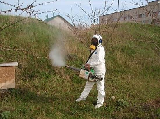 ВВолгоградской области проводят обработку водоемов против насекомых