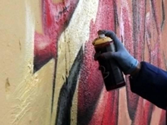 ВВолгоградской области вандал расписал стены школы идомов