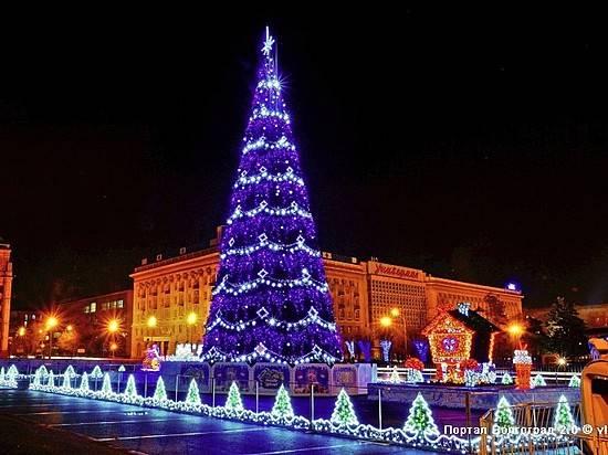 Установка новогодней ели вВолгограде обойдётся в 800 000 руб.
