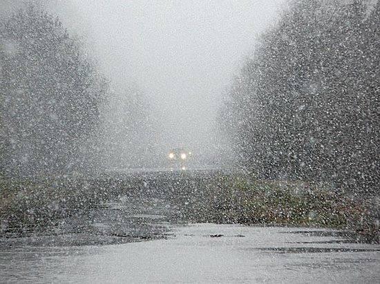 ВВолгоград прихадят туманы, мокрый снег игололед