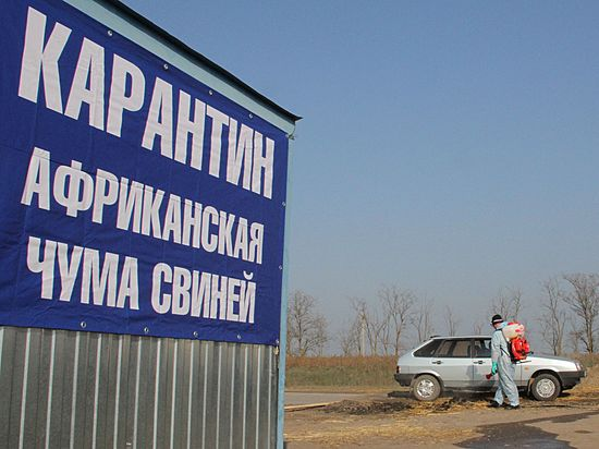ВКотовском районе введен карантин из-за АЧС