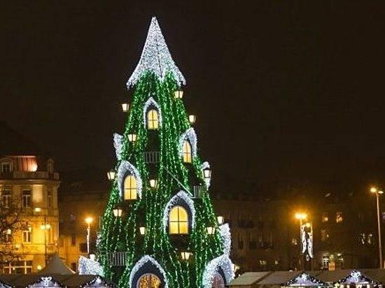 Нафестивале новогодней Арт-елки волгоградцам покажут 60 необыкновенных деревьев