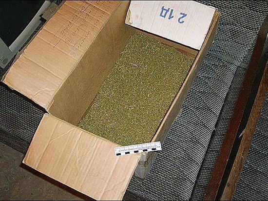 Напосту вГородищенском районе словили волгоградца скоробкой марихуаны