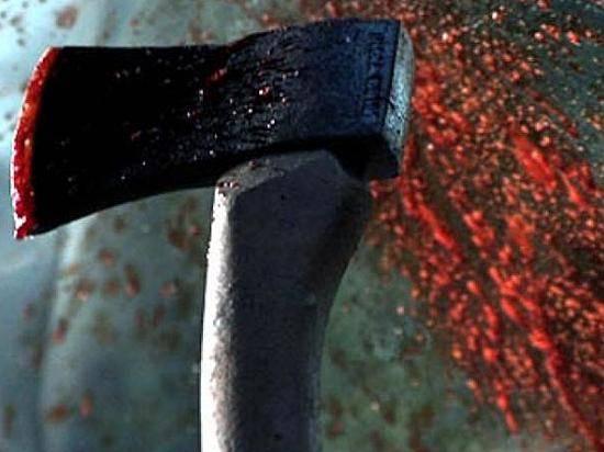 ВВолгоградской области селянин убил тесаком глухого соседа