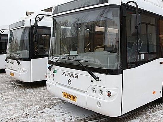 Три новых автобусных маршрута появятся вВолгограде к1февраля