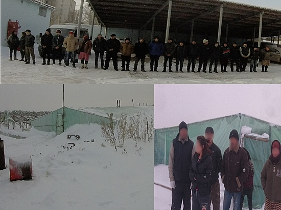 ВВолгоградской области задержаны 22 гражданина изУзбекистана иКитая