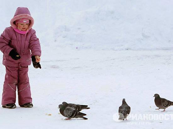 ВВолгоградской области морозы задержатся досередины февраля