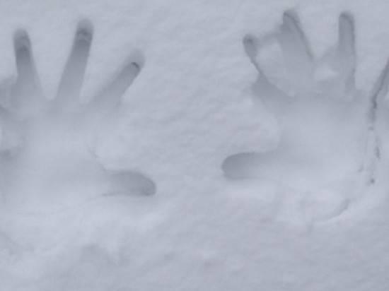 Под Волгоградом наокраине села насмерть замерз 26-летний парень
