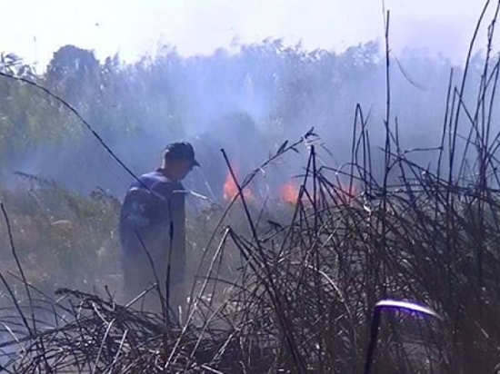 Предпосылкой едкого дыма вКрасноармейском районе Волгограда стал тлеющий камыш