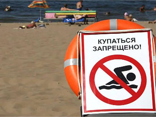 ВВолгоградской области летом организуют 36 берегов