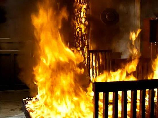 Иловлинская поджигательница «спалилась» заявив вполицию насаму себя