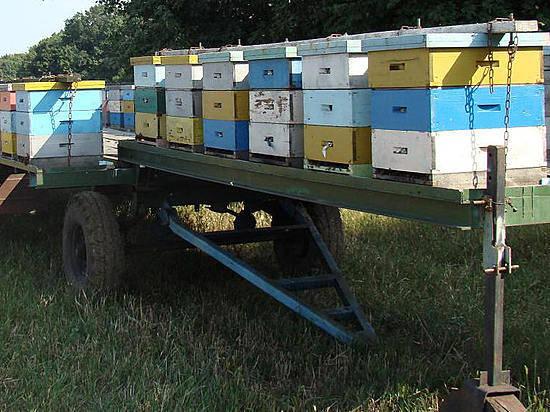 Прицеп для перевозки пчелиных ульев