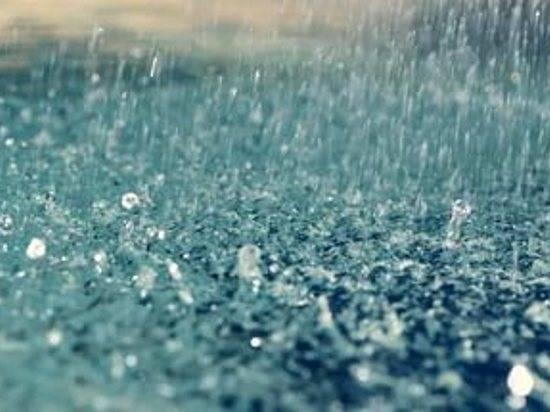 Новая неделя вВолгоградской области начнётся сдождей