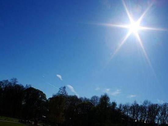 Всередине недели вВолгоград возвратится  30-градусная жара