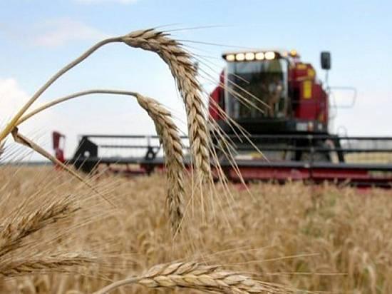 Аграрии Волгоградской области намолотили 4,5 млн тонн зерна