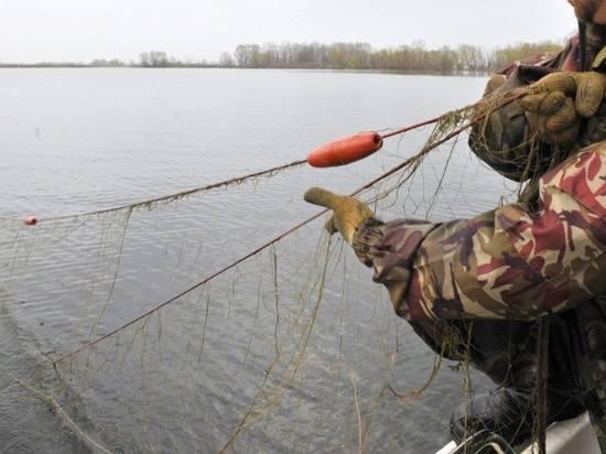 рыбалка браконьерскими снастями