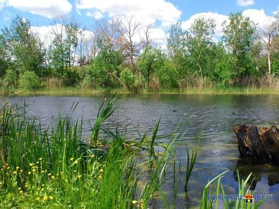 В Волгоградской области расчистят более 7 километров реки Арчеда